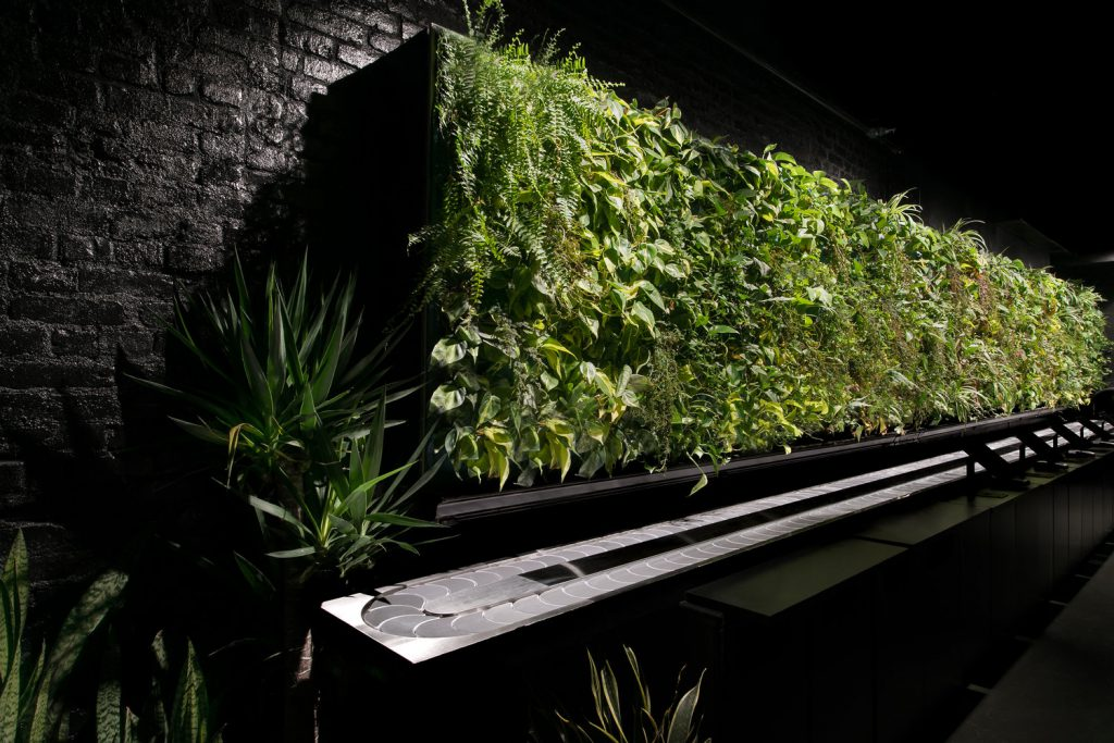 Living plant wall at Nap York in New York, NY | well-designed spaces