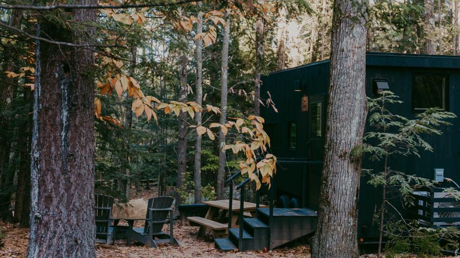 Nature Cabin Getaway