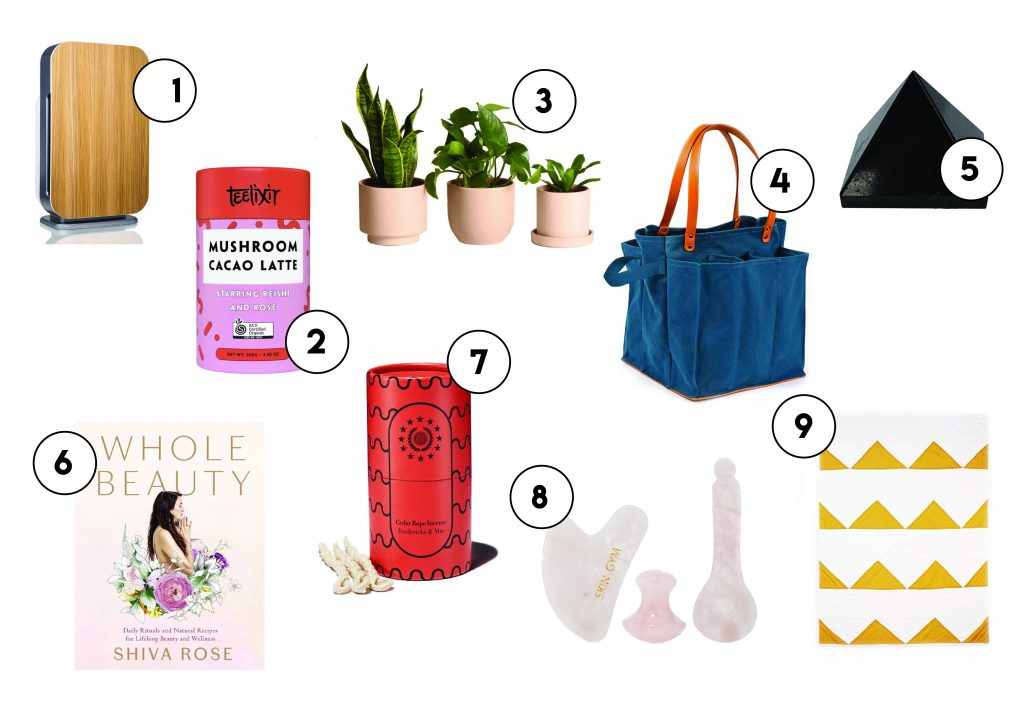 holistic and wellness gift guide
